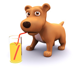 A nice cool drink for the 3d puppy