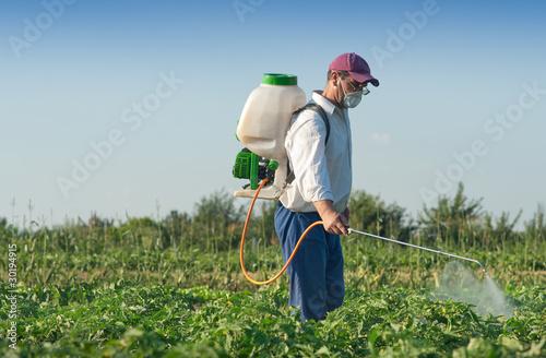 Man spraying vegetables