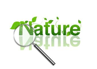 Investigando la Naturaleza