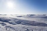 Ice cold desert poster