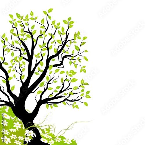 vecteur s rie arbre vectoriel et fleur illustration vectorielle fichier vectoriel libre de. Black Bedroom Furniture Sets. Home Design Ideas