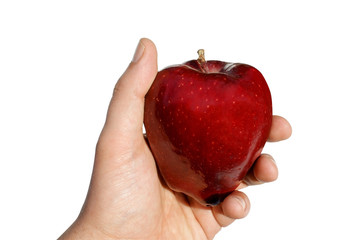 Apple in Hand Isolated Against White