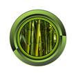 bambou jardin jardinage plante plantation printemps bouton