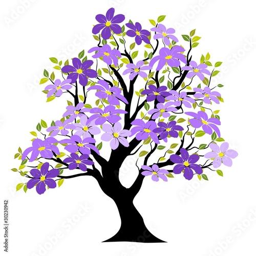 Printemps arbre vecteur fond blanc fleurs vectorielles - Arbre fleur mauve printemps ...