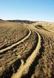 Track in desert