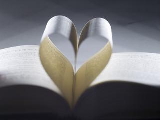 Libro cuore 1