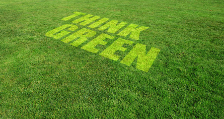 Think Green Text Painted on Green Lawn