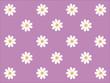 Gänseblümchen Muster