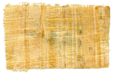 Fragment of Egyptian papyrus (for textured background)