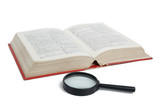 Magnifier and dictionary
