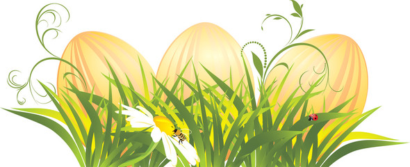 Easter eggs in the grass with chamomile. Vector