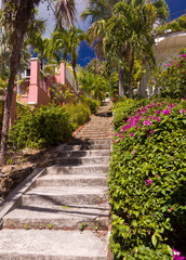 Steep 99 steps in St Thomas