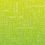 NATURE. Word cloud concept illustration.