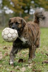 stolzer Fussballer