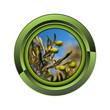 olivier jardin jardinage plante plantation printemps bouton