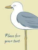 Background Illustration Seagull