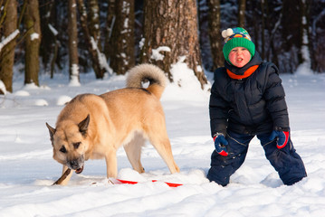 Dog and little boy playing in winter forest