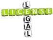 Legal License Crossword