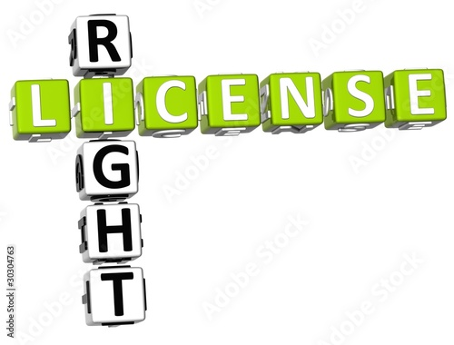 License Right Crossword