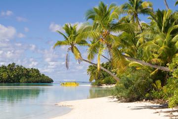 Palmenstrand von One Foot Island
