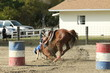 girl barrel racing falling with horse
