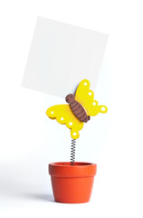 Notepaper attached by butterfly in a pot