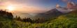 Fototapeten,wald,berg,panoramisch,frühling