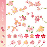 Cherry Blossom Icons Set