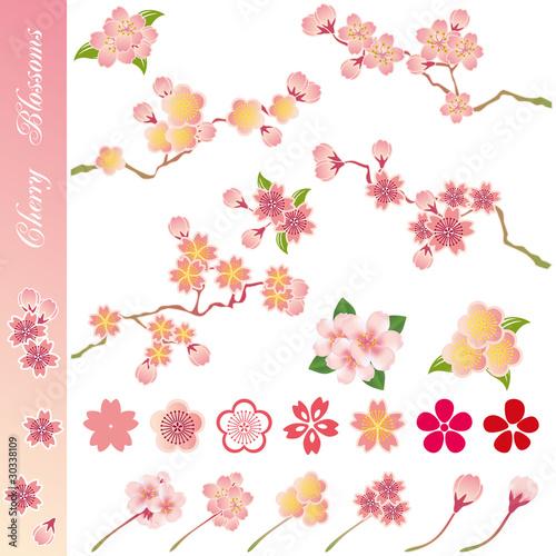 Cherry Blossom Icons Set