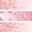 Cherry blossom banner set