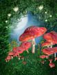 Łąka z czerwonymi grzybami i lampionami