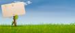 green sign on garden grass, horizontal banner, nature, blue sky