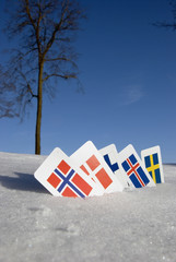 Nordic Europe country cards symbols on snow
