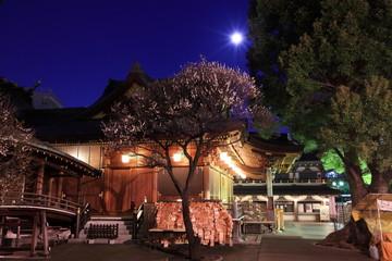 湯島天神 (東京・文京区)