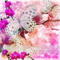 Butterflies and orchids flowers  pink background ( 1 of set) © o_april