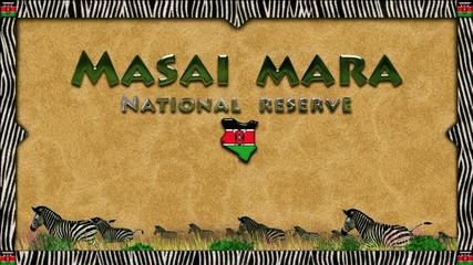 Masai Mara: lion skin