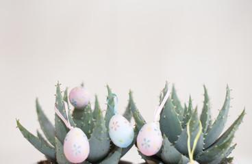 cactus a pâques