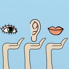 vista udito voce