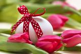 Fototapety Osterei mit gepunkteter roter Schleife vor Tulpen