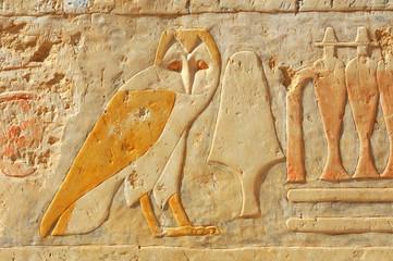The egyptian owl
