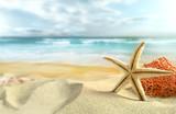 Fototapety Starfish on the Beach