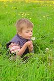 Little boy blowing a dandelion.
