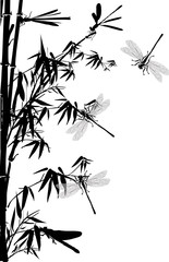 bamboo and dragonflies illustration