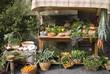 Medieval market stall selling fruit - 30413929