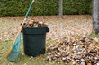 Autumn leaves in a garbage can