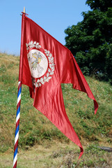 medieval knight banner in the field