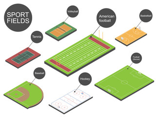 Sport fields. Vector illustration.