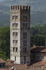 Lucca, vista della città dalla torre dei Guinigi