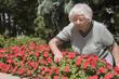 Senior woman flower garden
