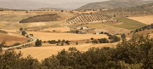 Spanish Farmhouse surrounded by cornfields near Ronda
